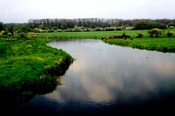 River Nene (17-05-2002)