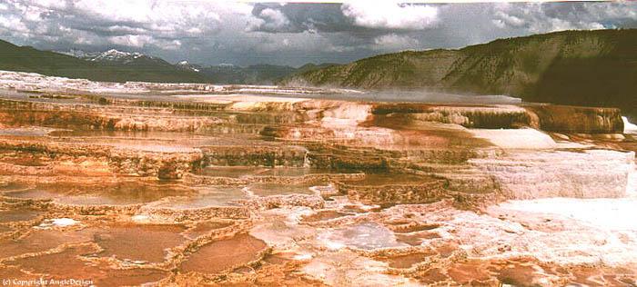 beren zien in yellowstone